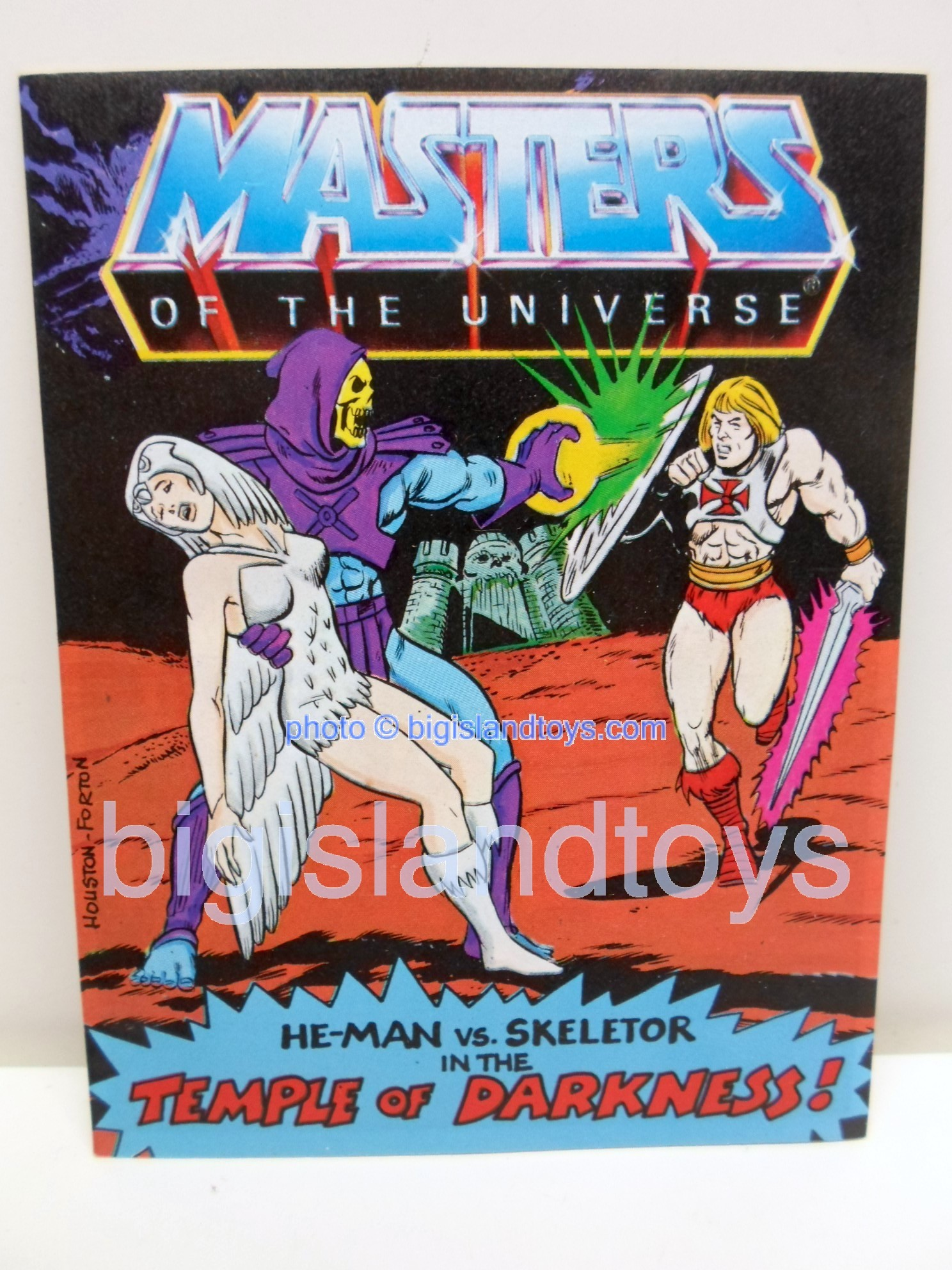Masters of the Universe Mini Comics   The Temple of Darkness!